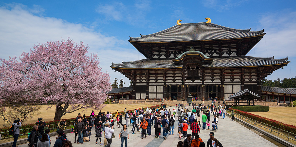 Trường Nhật ngữ ở Nara
